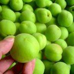 梅を煮詰めるとクエン酸とリンゴ酸が濃縮されるみたい