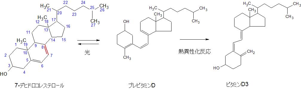7-デヒドロコレステロールからビタミンD3