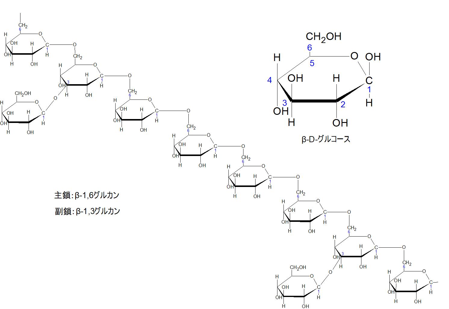 アガリクスのβ-1,6-glucan